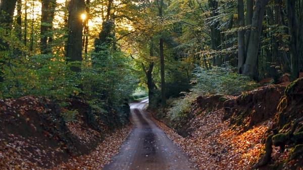 New Road by jon_gopsill