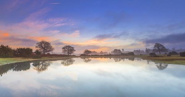 Misty Mogshade by NickLucas