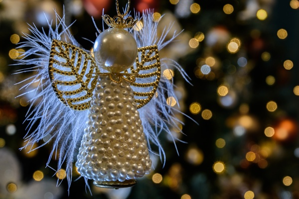 Backlit Angel  by dlm71