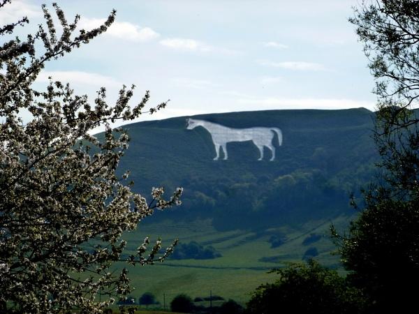 Westbury White Horse by Don20