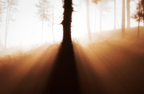 Glory of light by LaoCe