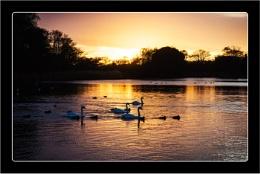 Thorpeness Pond