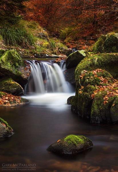 Cloughleagh Autumn by garymcparland