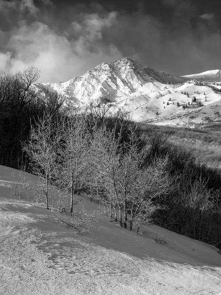 Mountain Glory by mlseawell