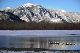 Fraser River BC CA in Winter