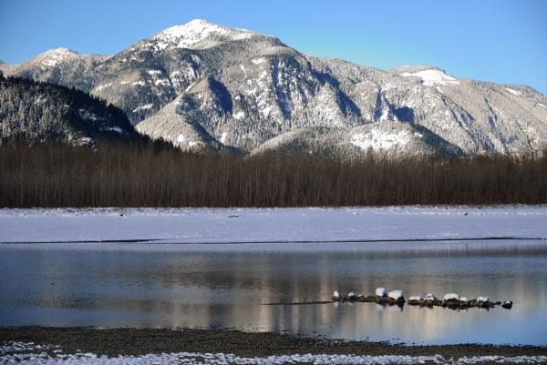 Fraser River BC CA in Winter by DouglasMorley