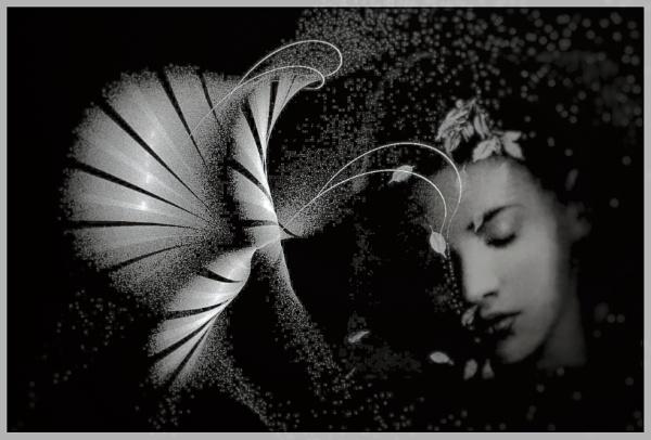 Dreams. by vikma19