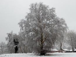A winters scene