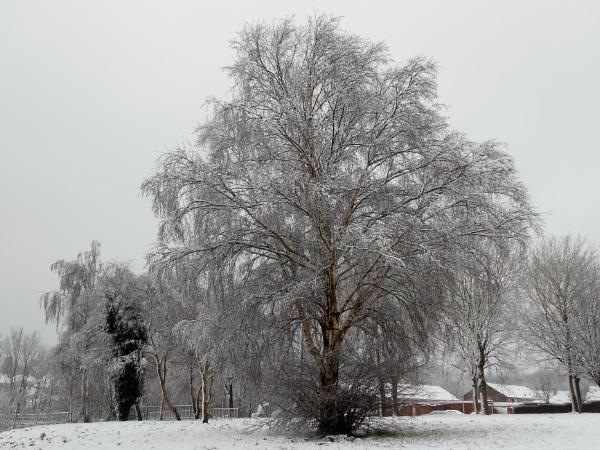 A winters scene by Spring2bok