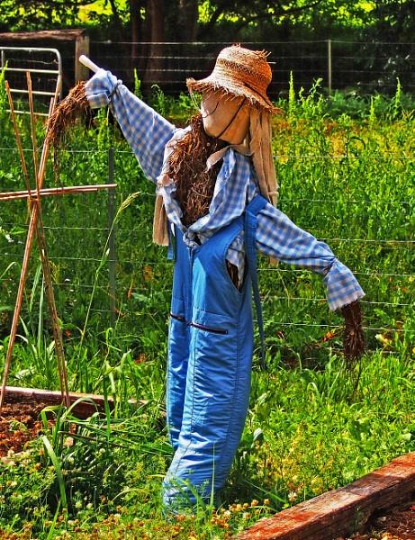 Scarecrow by Wireworkzzz