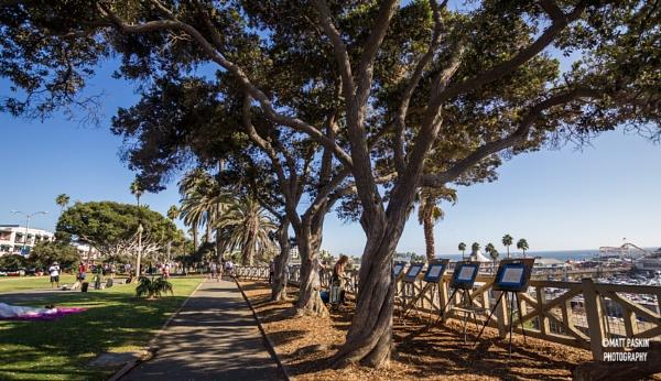 Santa Monica by mpphoto