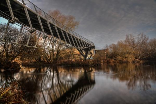 The living bridge 11-12-2016 by jholmes