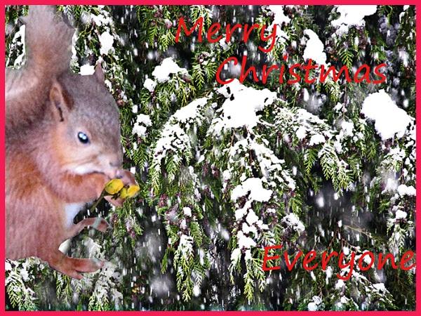 Happy Christmas by derekp