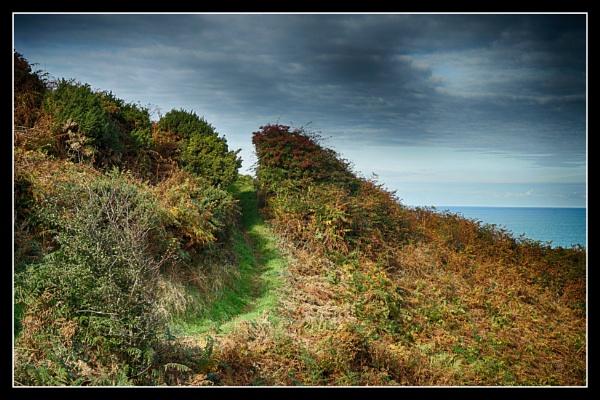 Autumn on the Wales Coastal Path by notsuigeneris