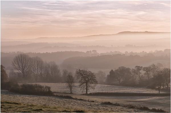 Sheepwalks at Dawn by Tobytoes