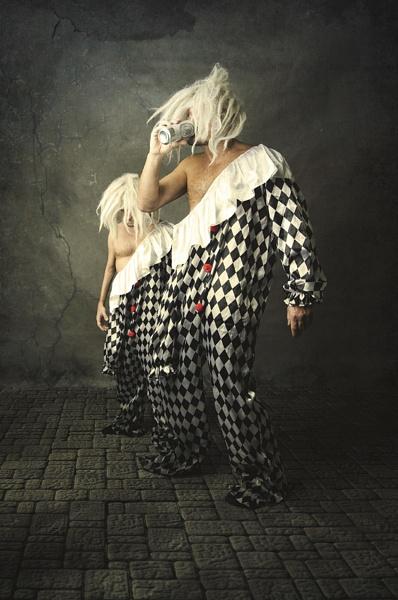harlequins by weron