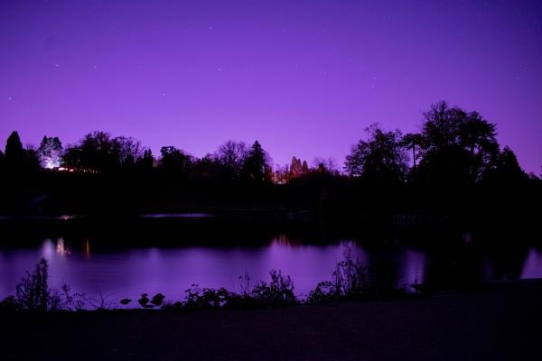 Dunorlan Park - Night sky glow by AngTheAmateur
