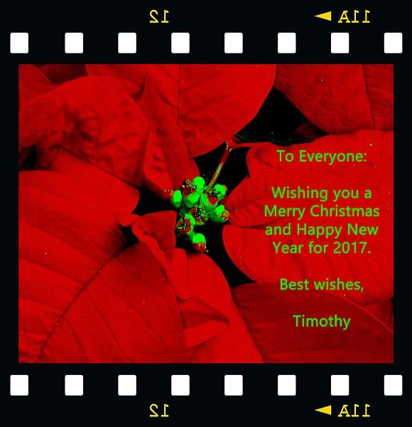 EARLIER CHRISTMAS GREETING by TimothyDMorton