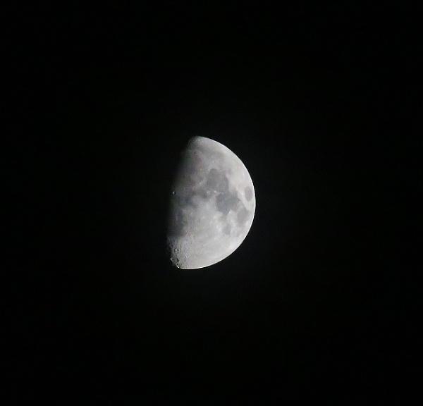 moon by linda68