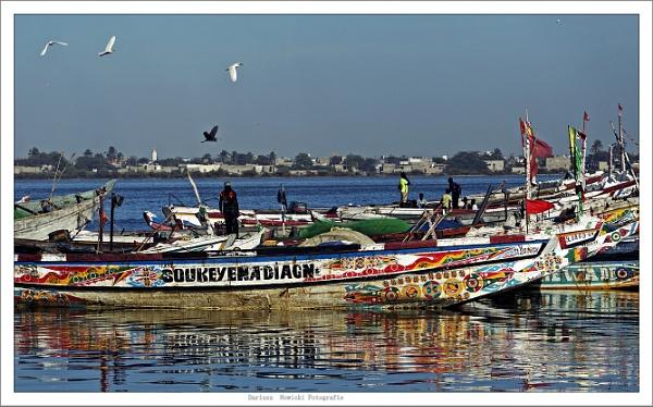 River Senegal ... view by papajedi
