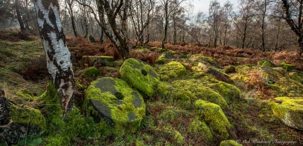 Derbyshire Millstones by kojak