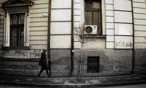 Urban Scene LII by MileJanjic
