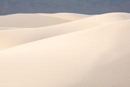 Dune scape