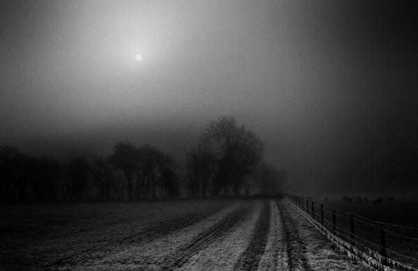 Fog & Frost by optik