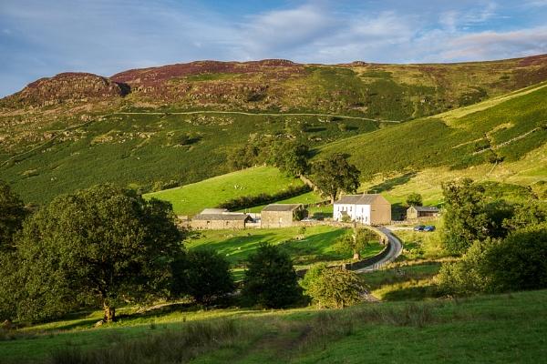 View of a Farm near Keswick in Cumbria by Phil_Bird