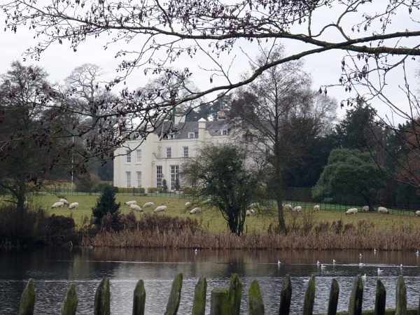 Wistow Hall, Leicestershire by Mags100