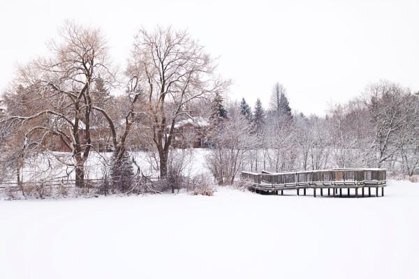 December Snow Scene by manicam