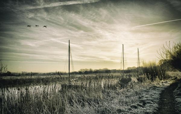 Three Swans for Three Ships A\'Sailin\' by UrbaneMagick