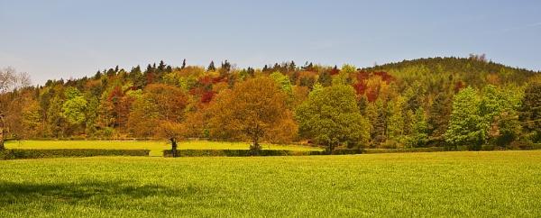 Autumn Wrekin by phiggy