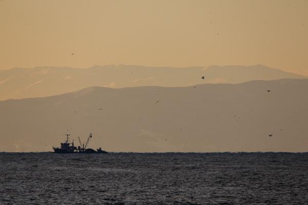 Fishing Boat by aksoyk