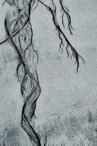 Long Legged Dancer by KelterPhotography