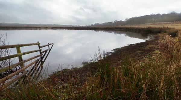 Bubbenhall Lake by tom_earwaker