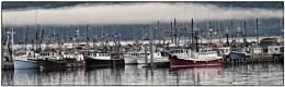 Scallop Boats Yarmouth NS
