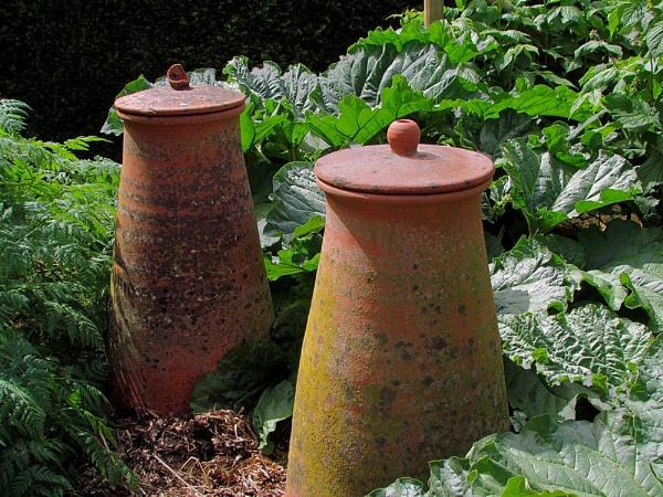 Rhubarb Forcing Pots 2 by pamelajean