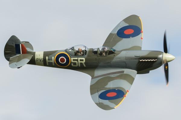 Spitfire T9 PV202 by spaldingd