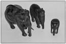 """""""Elephants"""" by Willmer"""