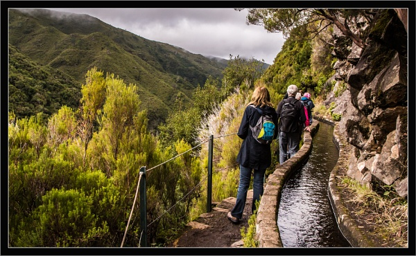 Lavada walk in Madeira by esoxlucius