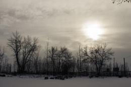 Quiet Winter Day