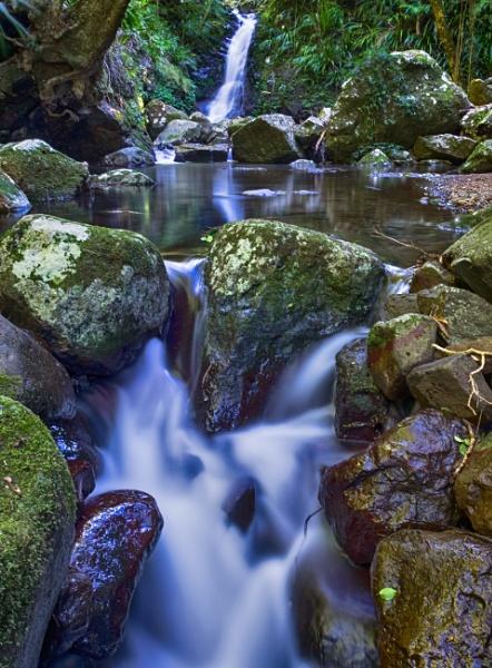 Nahnangboola Two Step, Coomera River, Lamington National Park by BobinAus