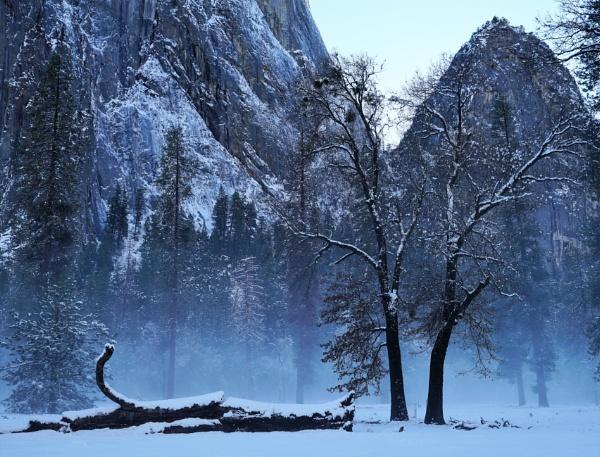 Yosemite Mist by cconstab
