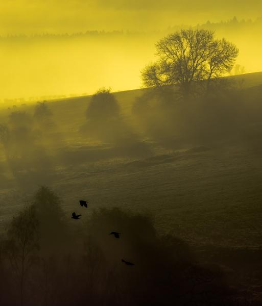 Sunrise Matlock by Legend147