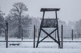 Watchtower Auschwitz