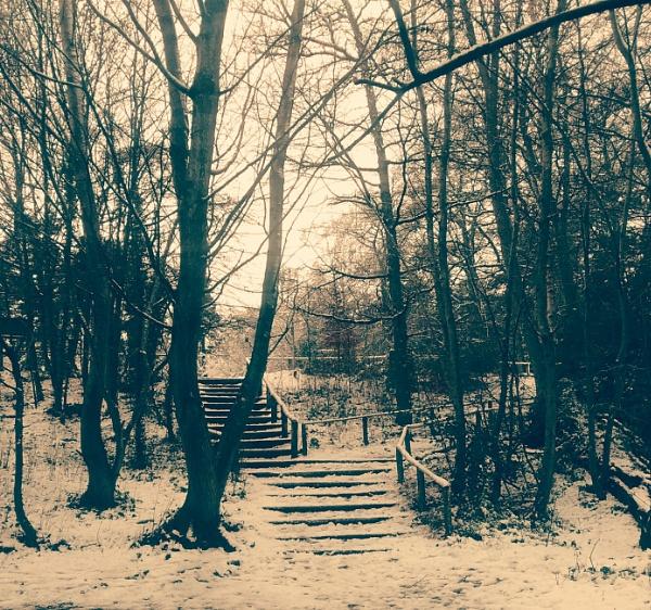Winter scene by KrazyKA