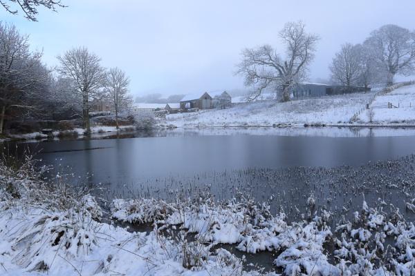winter by callumcorrie