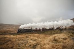 Moorland steam