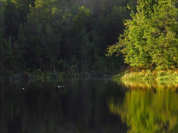 Lake Hanlon 1 by DevilsAdvocate